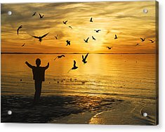 Flying Seagull With Silhouette Acrylic Print by Kam