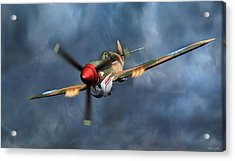 Flying Tiger P-40 Warhawk Acrylic Print by Walter Colvin