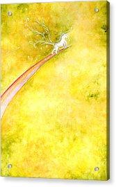 Flying Unicorn Acrylic Print by Asida Cheng
