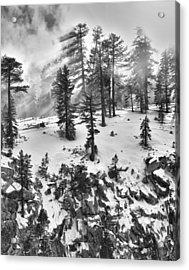 Fog Acrylic Print by A A
