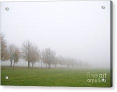 Fog Acrylic Print by Boris Suntsov