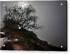 Acrylic Print featuring the photograph Fog Day by Edgar Laureano