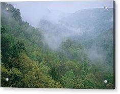 Fog Drifts Across A Cove In Tennessee Acrylic Print by Stephen Alvarez