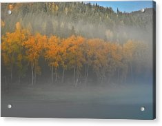 Acrylic Print featuring the photograph Foggy Autumn Morning by Albert Seger