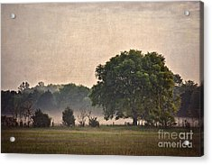 Acrylic Print featuring the photograph Foggy Country Morning by Cheryl Davis