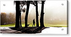 Foggy Day To Walk The Dog Acrylic Print by Harry Neelam