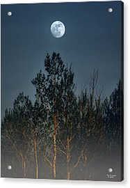 Foggy Forest With Full Moon Acrylic Print by Peg Runyan