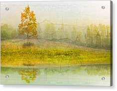 Foggy Meadow Acrylic Print by Debra and Dave Vanderlaan