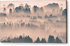 Foggy Morning 21 Acrylic Print