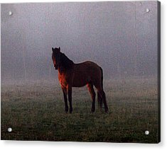 Foggy Morning Greeting Acrylic Print