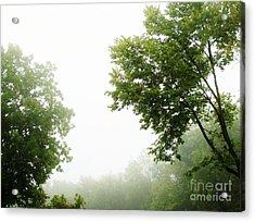 Foggy Morning Acrylic Print by Marsha Heiken
