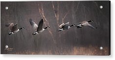 Foggy Morning Takeoff Acrylic Print