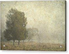 Foggy Morning. Trossachs National Park. Scotland Acrylic Print by Jenny Rainbow