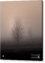 Acrylic Print featuring the photograph Foggy Pasture by Deborah Smith