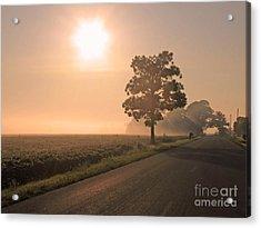 Foggy Sunrise On Soybean Field Acrylic Print