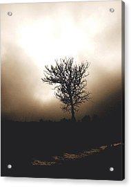 Foggy Winter Morning Acrylic Print by Ann Powell