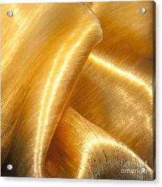 Acrylic Print featuring the photograph Folding Gold by Artist and Photographer Laura Wrede