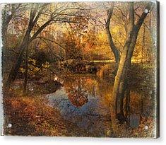 Foliage Canvas Acrylic Print by John Rivera