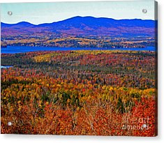 Foliage From Height Of Land Acrylic Print