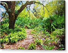 Follow The Path  Acrylic Print by Betsy Knapp