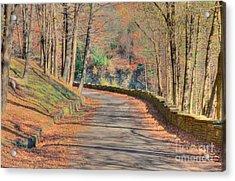 Follow The Path Acrylic Print by Kathleen Struckle