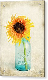For My Friend Acrylic Print by Darren Fisher
