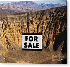 For Sale Sign In Desert Landscape Acrylic Print by David Buffington