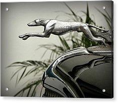 Ford Greyhound Radiator Cap Acrylic Print