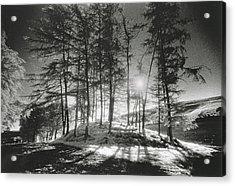 Forelacka Burial Ground Acrylic Print by Simon Marsden