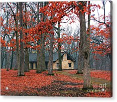 Forest Field House 2 Acrylic Print