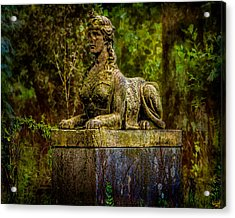 Forest Mysteries Acrylic Print by Chris Lord