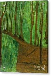 Forest Path Acrylic Print by Berta Barocio-Sullivan