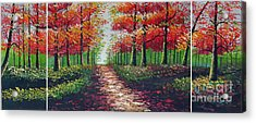 Forest Path Acrylic Print by Kostas Dendrinos
