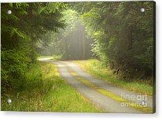 Forest Portal Acrylic Print by Idaho Scenic Images Linda Lantzy