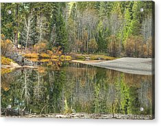 Forest Reflection-merced River Acrylic Print by Ron Schwager
