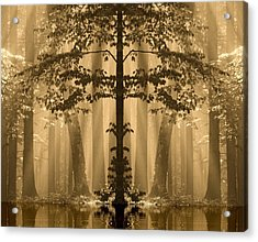 Acrylic Print featuring the photograph Forest Reflection by Odon Czintos