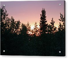 Forest Sunset Silhouette Acrylic Print