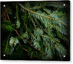 Acrylic Print featuring the photograph Forever Green by Robin Dickinson