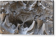 Fossils. Acrylic Print by Tautvydas Davainis