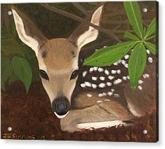 Acrylic Print featuring the painting Found A Fawn by Janet Greer Sammons
