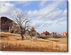 Acrylic Print featuring the photograph Fountain Valley by Cheryl McClure