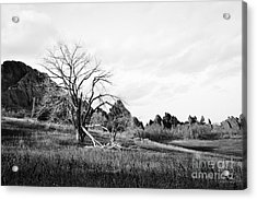 Fountain Valley In Black And White Acrylic Print