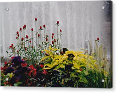 Fountains And Floral Acrylic Print