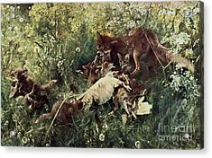 Fox Family Acrylic Print by Pg Reproductions