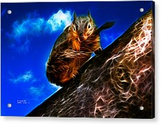 Acrylic Print featuring the digital art Fractal - How Do You Like My Mustache - Robbie The Squirrel by James Ahn