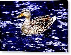Fractal - Mallard In Pond- 9164 Acrylic Print by James Ahn
