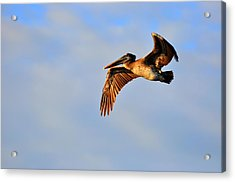 Free Acrylic Print by Barry R Jones Jr