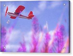 Free Flight Acrylic Print