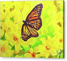 Acrylic Print featuring the drawing Free To Fly by Beth Saffer