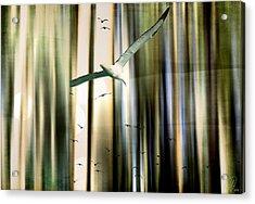 Freedom Flight Acrylic Print